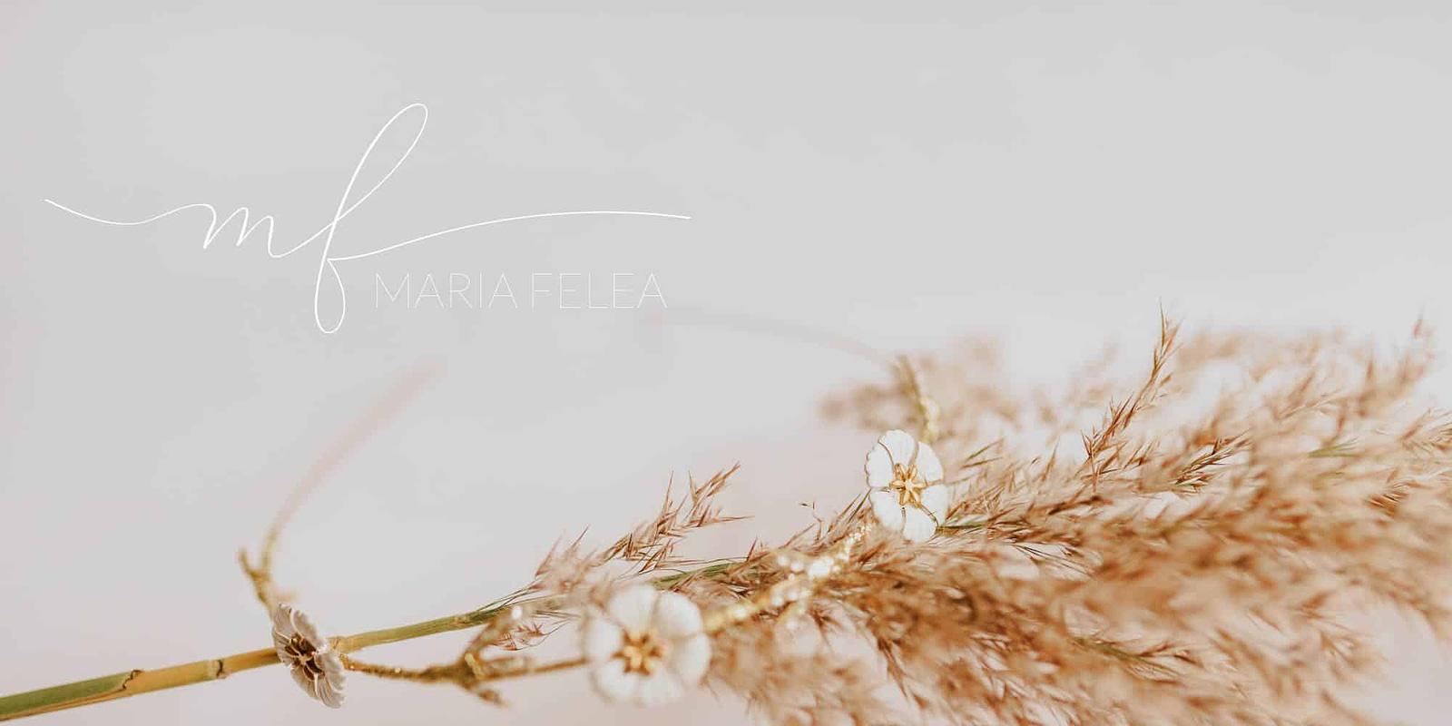 Maria Felea, style guide, identitate vizuala, branding, brand, logo, logo design