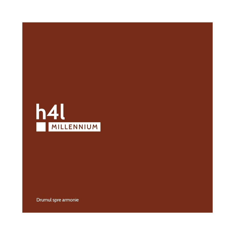 h4l, h4l MILLENNIUM, home 4 life, branding, design